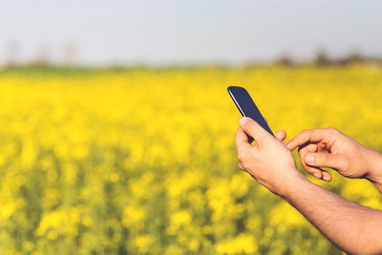 рост рынка смартфонов